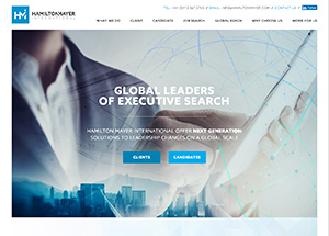hamilton mayer international website