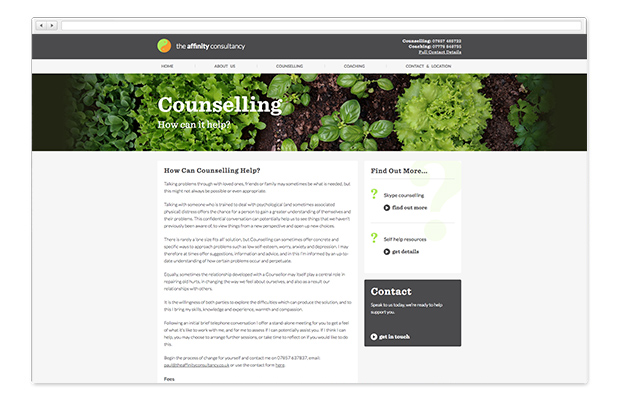 affinity consultancy website